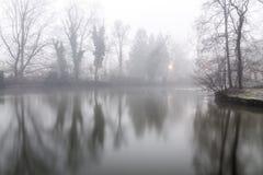 Foggy lake morning Royalty Free Stock Image