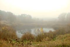 Foggy lake Stock Images