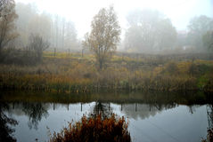 Foggy lake Royalty Free Stock Photography