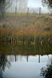Foggy lake Royalty Free Stock Images