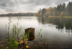 Foggy lake of Russia stock image