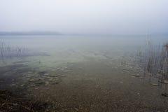 Foggy lake. A sad foggy lake Royalty Free Stock Images