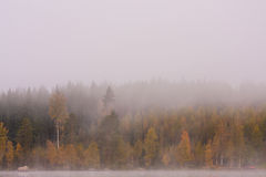 Foggy lake scape and vibrant autumn colors in trees. At dawn Stock Images