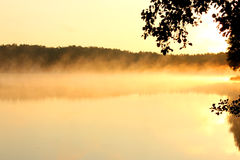 Foggy lake Stock Images