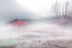 Foggy landscape Royalty Free Stock Photography