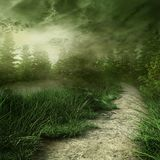 Foggy landscape. With a path by the river Stock Photos