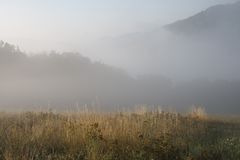 Foggy landscape Royalty Free Stock Images