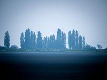 Foggy landscape Stock Image