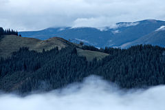 Foggy landscape of Carpathian mountains Stock Photos
