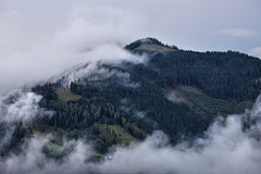 Foggy landscape of Carpathian mountains Stock Image
