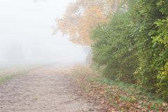 Foggy landscape with dirt road. Autumn nature Stock Photo