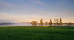 Foggy Landscape. Early Morning Mist. Royalty Free Stock Image