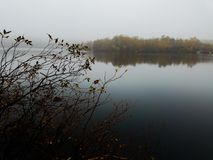 The lake Royalty Free Stock Photography