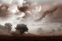 Foggy landscape fantasy Royalty Free Stock Photography