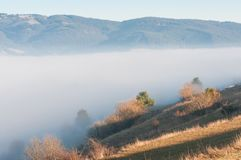 Foggy landscape . royalty free stock image