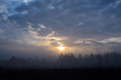 Foggy landscape of lithuanian meadows on summer morning Royalty Free Stock Photo