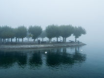 Foggy landscape. In the middle of a lake stock image