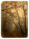 Foggy landscape. Old postcard. Stock Image