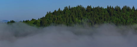Mountain mist landscape panorama. Beautiful foggy landscape panorama on the early morning Royalty Free Stock Photo