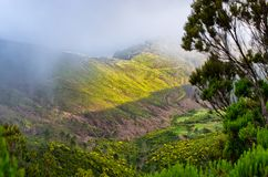 Foggy landscape on Paul da Serra plateau, Madeira, Portugal Stock Photos