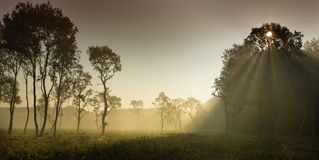 Foggy landscape in plains Royalty Free Stock Photos