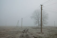 Foggy landscape with power lines rustic field background, frost on the ground, noise film effect Stock Image