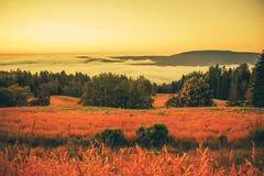 Foggy Landscape at Sunset royalty free stock photos