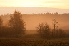 Foggy landscape Stock Images