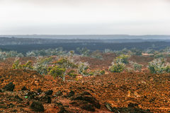 Foggy landscape of the valley, where the volcano Royalty Free Stock Photo