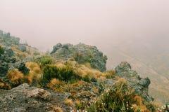 The foggy landscapes of Mount Kenya. Foggy landscapes with a volcanic crater background, Mount Kenya National Park, Kenya stock photos
