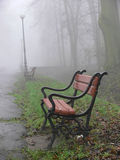 Foggy lane. Red bench in the fog stock images