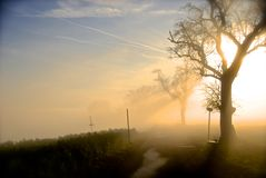Foggy Lord of the rings look-a-like scenery stock photography