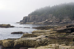 Foggy Maine Coast. Foggy day in Acadia National Park Royalty Free Stock Photos