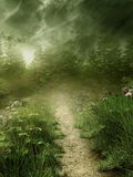 Foggy meadow. With a narrow path Royalty Free Stock Images