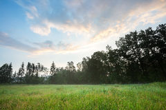 Foggy meadow landscape. stock photography