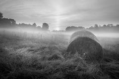 Foggy Meadow in the Lublin region. Stock Photography