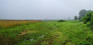 Foggy Meadow Panorama Royalty Free Stock Photography