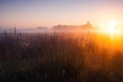 Foggy meadow sunrise Stock Photos