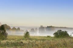 Foggy meadow at sunrise on Podlasie, Poland Stock Photos