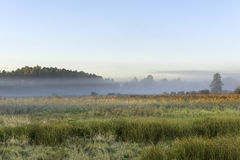 Foggy meadow during the sunrise in Poland Royalty Free Stock Images