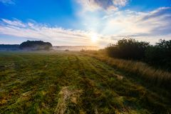 Foggy meadow under blue sky in rural area stock photo