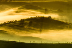 Foggy meadows in the morning, Tuscany Stock Photo