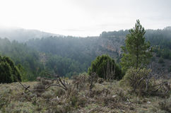 Foggy mediterranean mountain landscape Royalty Free Stock Images