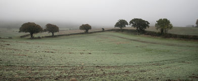 Foggy misty Autumn morning landscape in British countryside Royalty Free Stock Photos