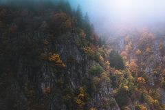 Foggy and moody scenery in the Vosges mountains, France. Colorful trees and rocky cliff landscape. Foggy and moody autumn of fall scenery in the Vosges mountains royalty free stock image
