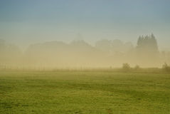Foggy morning. In a warm tonality stock photography