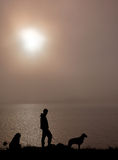 Foggy morning. Boy with dog in a foggy morning Stock Photography