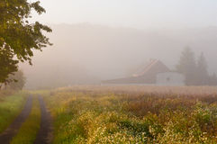 FOGGY MORNING. Foggy early morning in the country Royalty Free Stock Photos