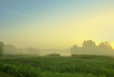 Foggy morning. In Kyiv suburbs in the sunrise Stock Photo