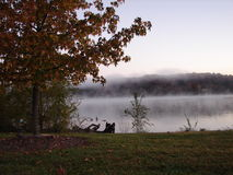 Foggy morning. This was a shot of a lake on a cold morning Stock Images